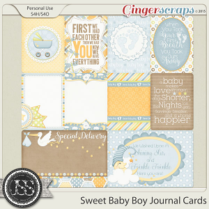 Sweet Baby Boy Journal and Pocket Scrapbooking Cards