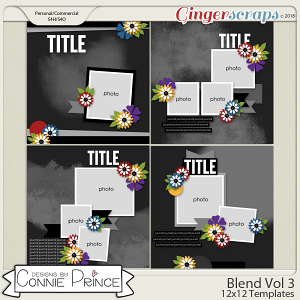 Blend Volume 3 - 12x12 Temps (CU Ok) by Connie Prince