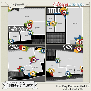 The Big Picture Volume 12 - 12x12 Temps (CU Ok)