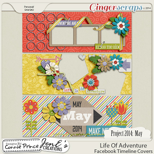 Project 2014 May:  Life Of Adventure - Facebook Timeline Covers