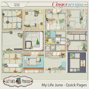 My Life - June Quick Pages