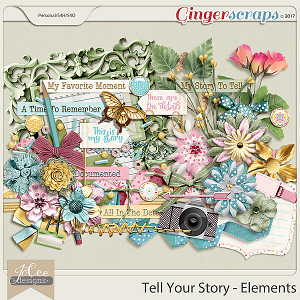 Tell Your Story Elements