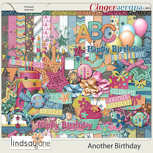 Another Birthday by Lindsay Jane
