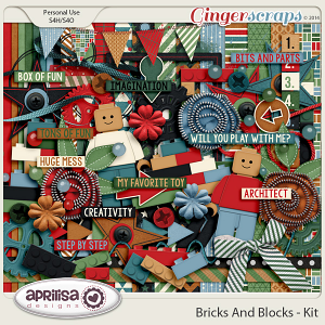 Bricks And Blocks Kit
