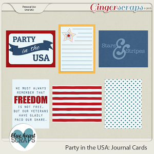 Party in the USA Journal Cards