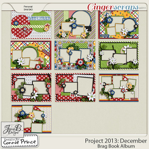 Project 2013:  December - Brag Book Album
