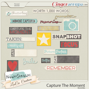 Capture The Moment Word Bits