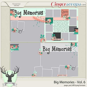 Big Memories Vol 6