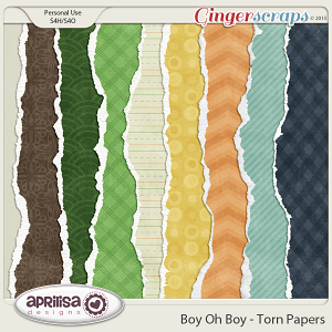 Boy Oh Boy - Torn Papers