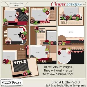 Retiring Soon - Brag A Little - Vol 3: 5x7 BragBook Templates (CU Ok)