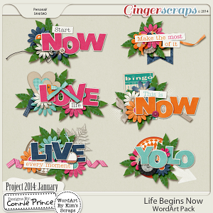 Project 2014 January:  Life Begins Now - WordArt Pack