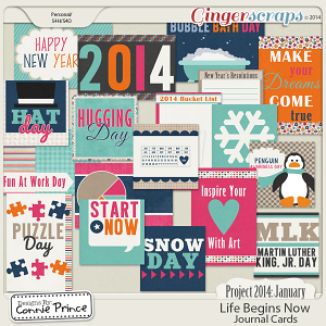 Project 2014 January:  Life Begins Now - Journal Cards