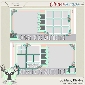 So Many Photos Templates by Dear Friends Designs