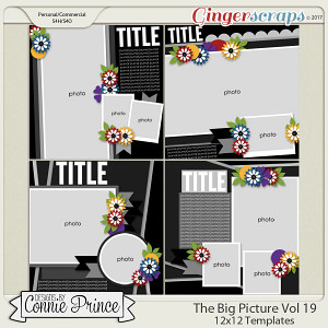 The Big Pic Volume 19 - 12x12 Temps (CU Ok)