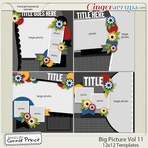 The Big Picture Volume 11 - 12x12 Temps (CU Ok)