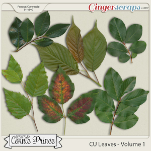 Commercial Use Leaves Volume 1