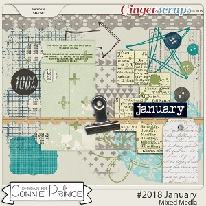 #2018 January - Mixed Media by Connie Prince