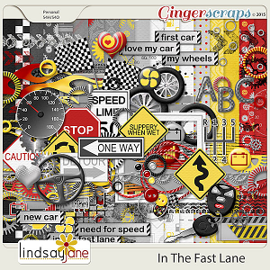 In The Fast Lane by Lindsay Jane