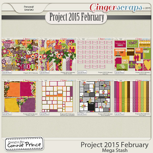 Project 2015 February - Mega Stash