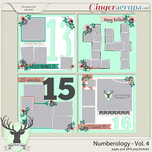 Numerology Vol 4