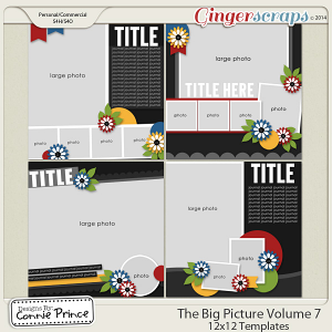 The Big Picture Volume 7 - 12x12 Temps (CU Ok)