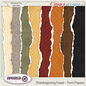 Thanksgiving Feast - Torn Papers by Aprilisa Designs