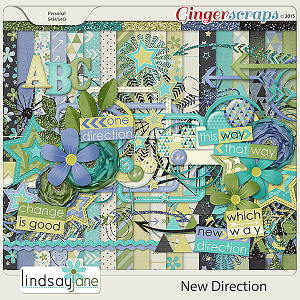 New Direction by Lindsay Jane