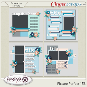 Picture Perfect 158 by Aprilisa Designs