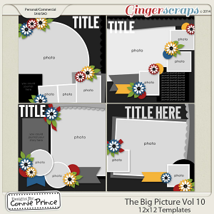 The Big Picture Volume 10 - 12x12 Temps (CU Ok)