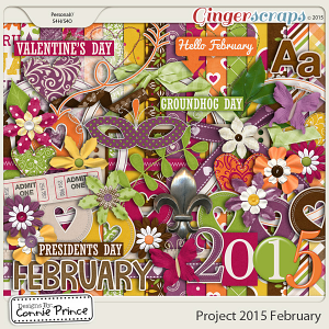 Project 2015 February - Kit