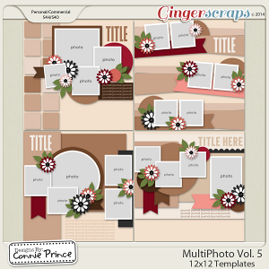 Retiring Soon - MultiPhoto Volume 5 - 12x12 Temps (CU Ok)