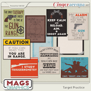 Target Practice JOURNAL CARDS by MagsGraphics