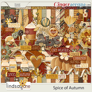 Spice of Autumn by Lindsay Jane