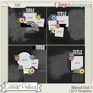 Blend Volume 1 - 12x12 Temps (CU Ok) by Connie Prince