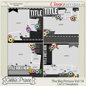 The Big Picture Volume 14 - 12x12 Temps (CU Ok)