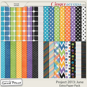 Project 2013: June - Extra Papers
