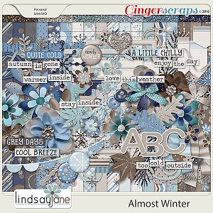 Almost Winter by Lindsay Jane
