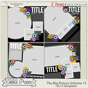 The Big Picture Volume 15 - 12x12 Temps (CU Ok)
