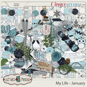 My Life - January