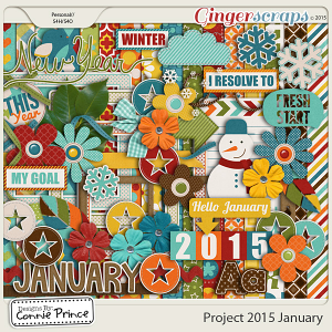 Project 2015 January - Kit