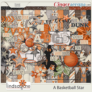 A Basketball Star by Lindsay Jane