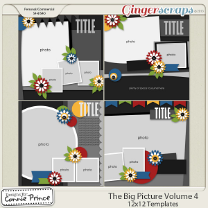 The Big Picture Volume 4 - 12x12 Temps (CU Ok)