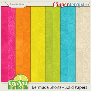 Bermuda Shorts Solid Papers