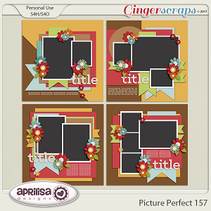 Picture Perfect 157 by Aprilisa Designs