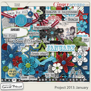 Project 2013: January - Kit