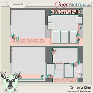 One of a Kind Templates by Dear Friends Designs