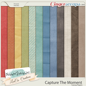 Capture The Moment Canvas Papers