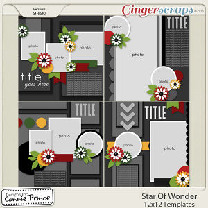 Star Of Wonder - 12x12 Temps (CU Ok)