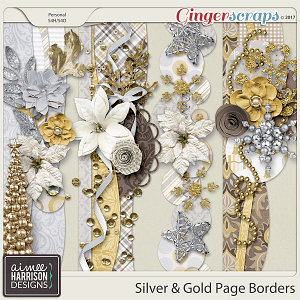 Silver & Gold Borders by Aimee Harrison