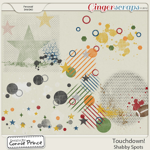 Touchdown! - Shabby Spots